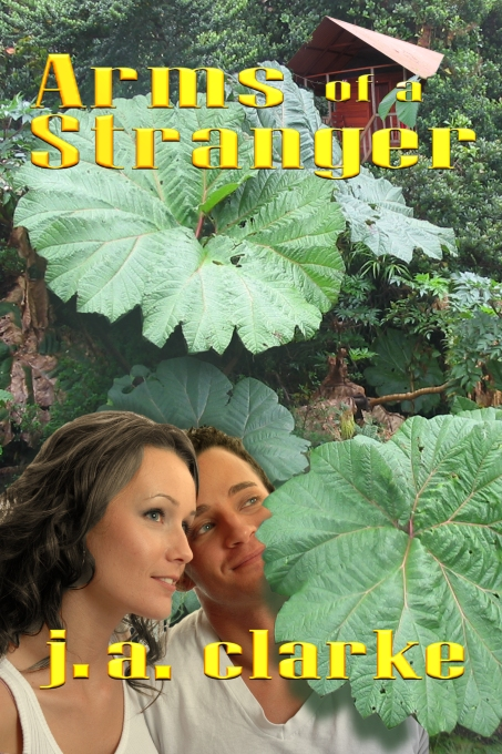 Arms of a Stranger by J.A. Clarke