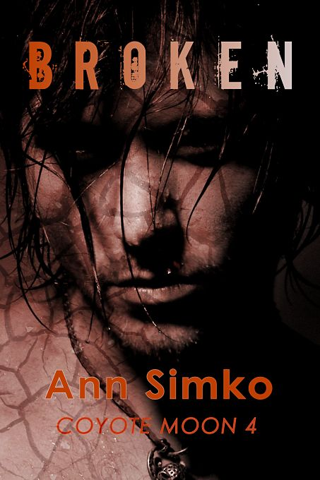 Broken by Ann Simko